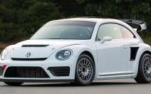 Volkswagen Coccinelle GRC : Choupette s'énerve