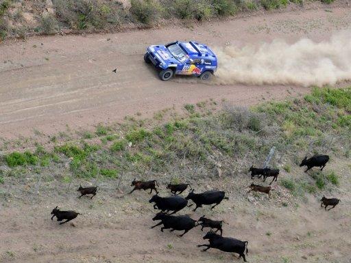 Dakar-2011: Sainz et Despres accentuent la pression à la 2ème étape