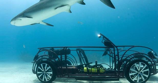 Insolite : une VW Coccinelle Cabriolet convertie en cage anti-requin