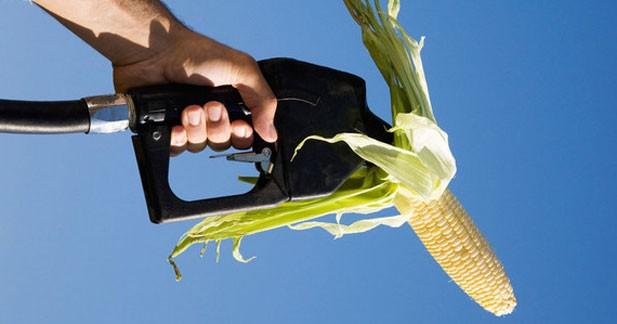 La filière du bioéthanol s'oppose au plafonnement des biocarburants