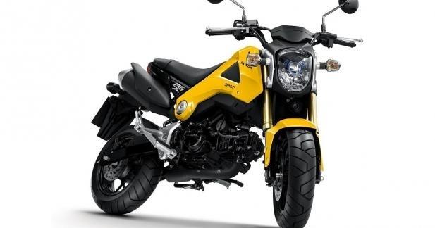 MSX 125 : Honda relance le Dax pour 2013 !