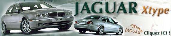 Une petite Jaguar qui voit grand