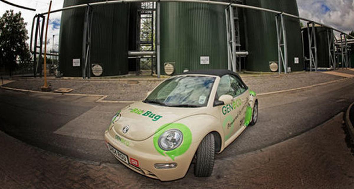 New Beetle Bio-Bug : tout se recycle…