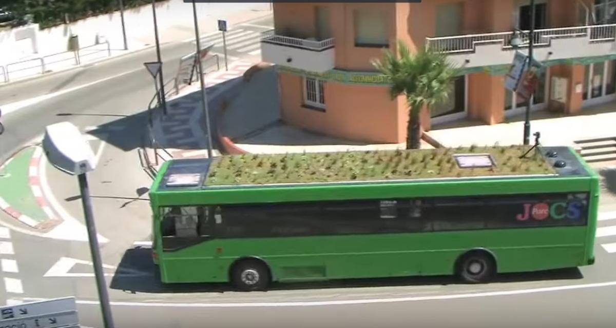 Les toits des bus de Madrid deviennent des jardins