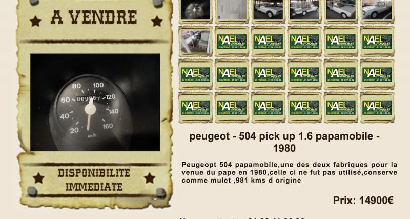 Offrez-vous la Peugeot 504 Papamobile !