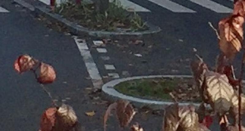Blocages des routes en direct : 1 mort, 26 blessés et des bagarres