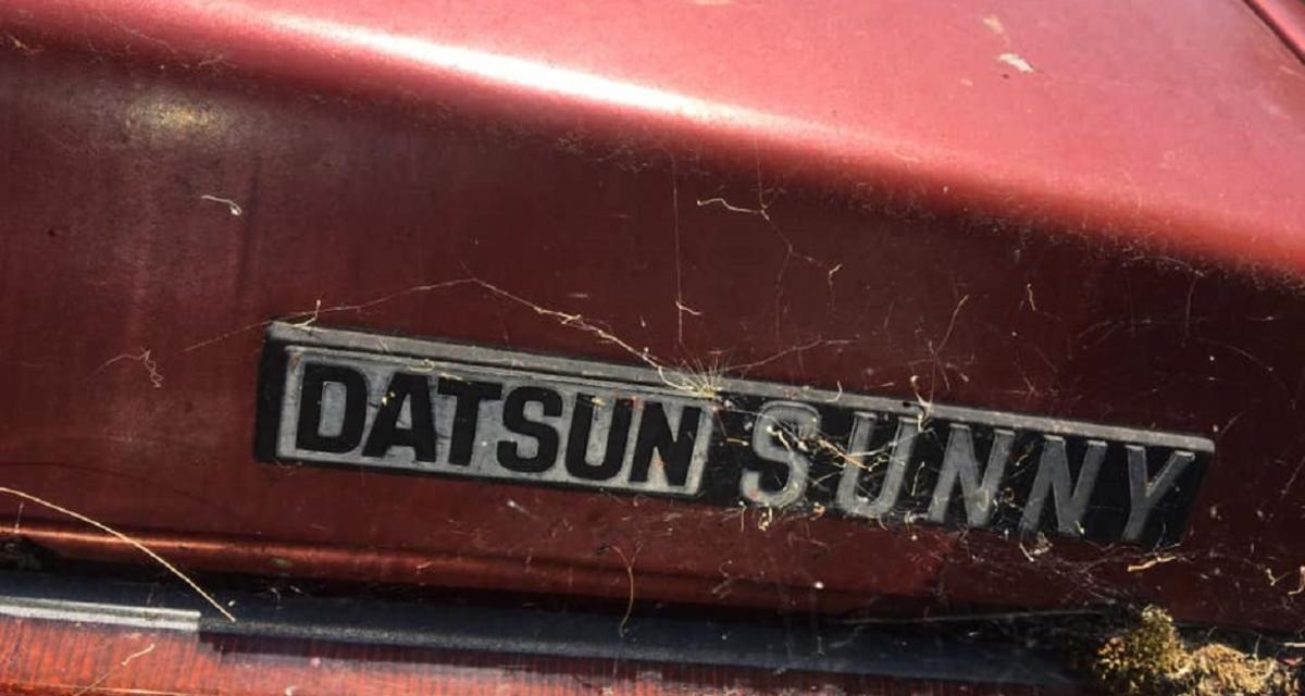 Australie : il fait cuire un rôti de porc dans sa Datsun Sunny