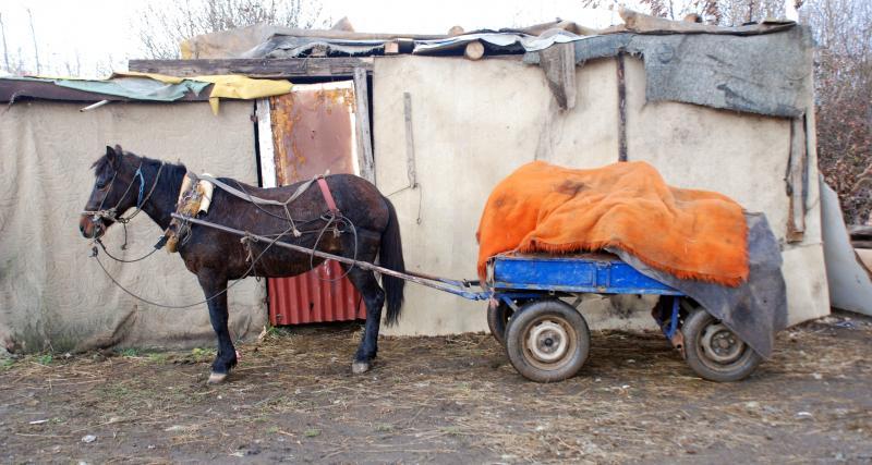 En plein confinement il prend une départementale... à cheval !