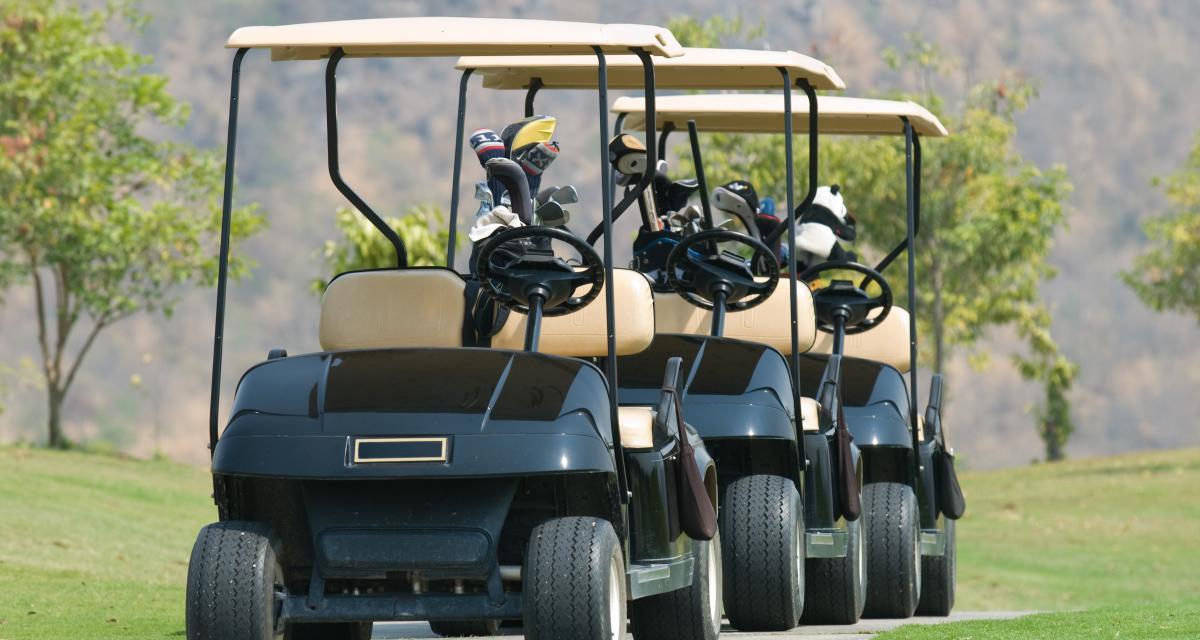 Aux Etats-Unis, 200 habitants pro-Biden paradent… en voiturettes de golf