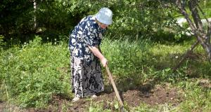 Une mamie rebelle de 87 ans se fait flasher dans le Jura à 143 km/h et se retrouve devant le tribunal