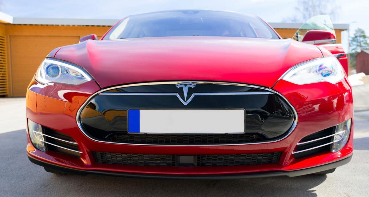 Tesla stoppe la construction de sa Gigafactory allemande à cause des serpents