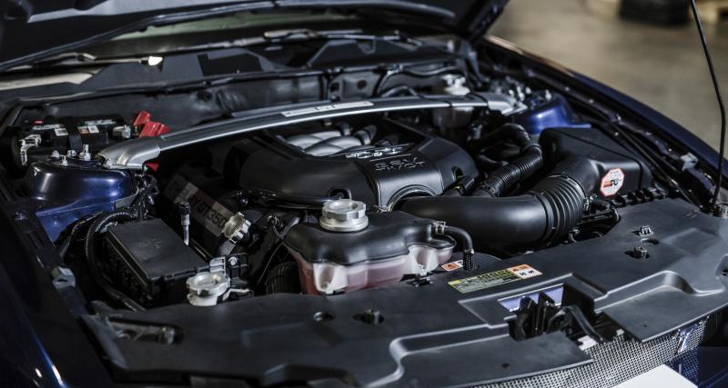 Trois options de V8 chez Shelby