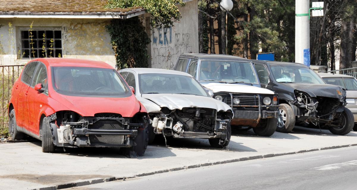 6 voitures heurtent un sanglier, du dégât mais aucun blessé, costaud le bestiau