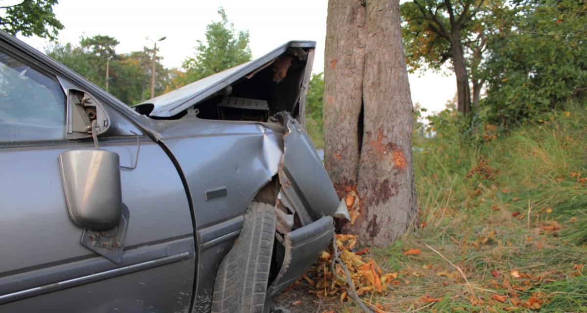 VIDEO - Il prend la fuite d'un rassemblement illégal de voitures et termine dans un arbre