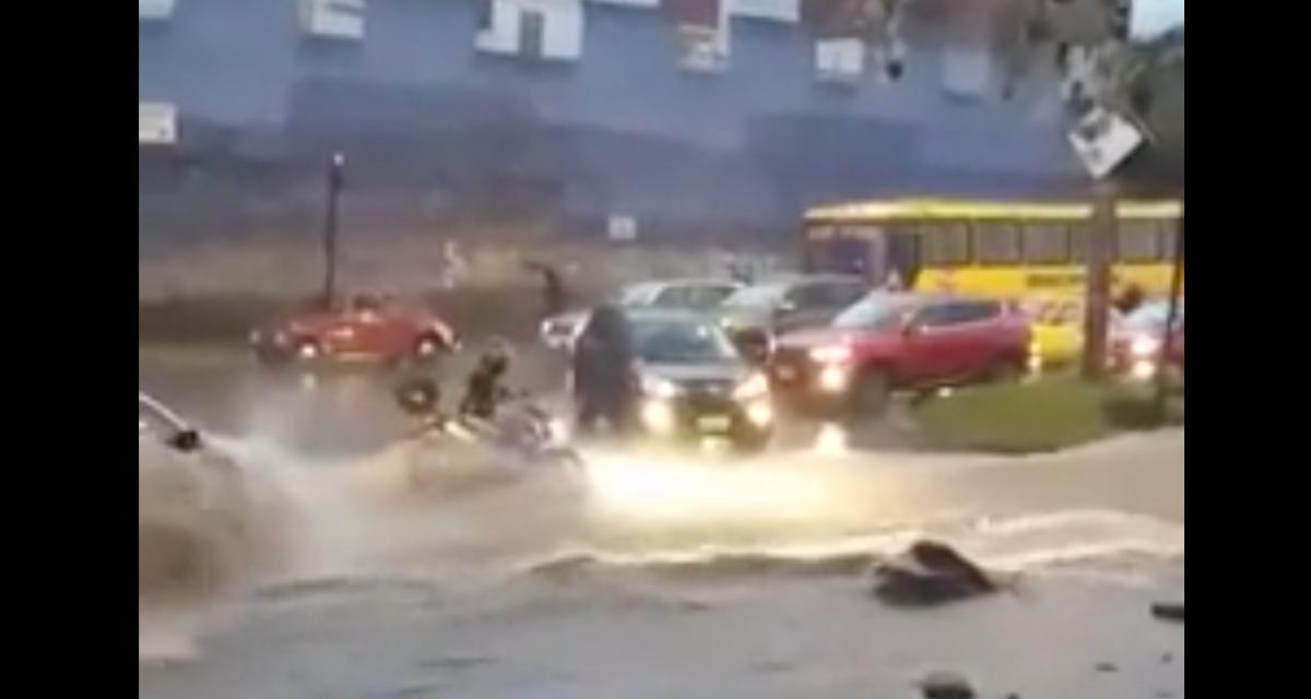 VIDEO - La nature reprend toujours ses droits, cette moto en a fait les frais