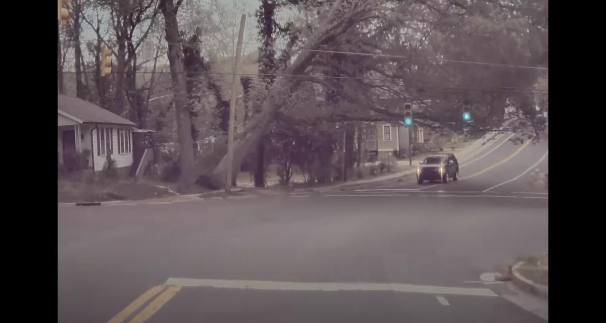 VIDEO - Ce SUV évite de peu la chute d'un arbre et s'en sort très très bien