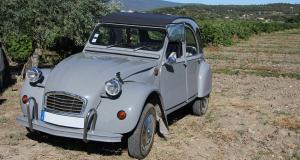 """Vente """"Country Cars #2"""" par Carprecium ce lundi 10 mai 2021 : à vos enchères !"""