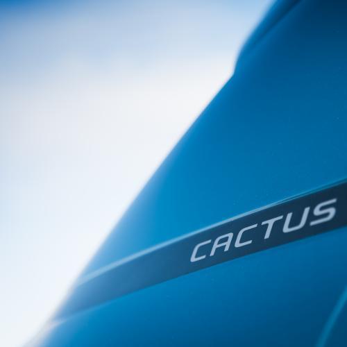 Citroën C4 Cactus (essai - 2018)