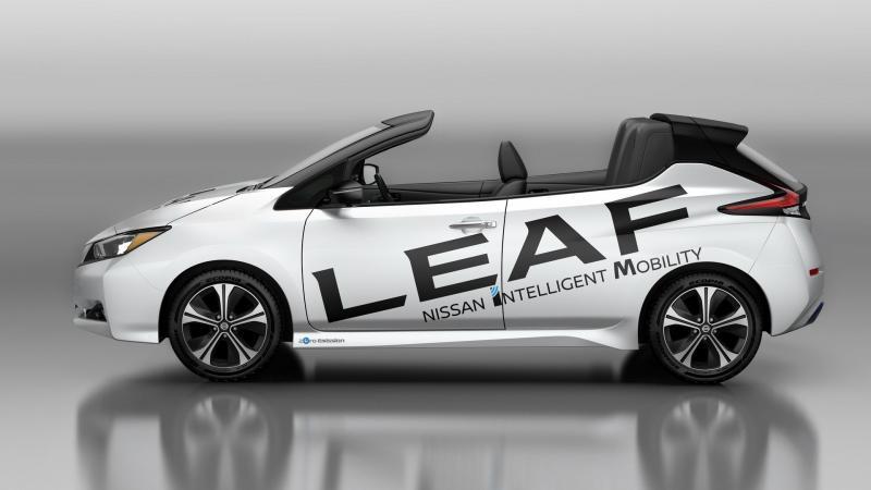 Nissan Leaf Open-Air