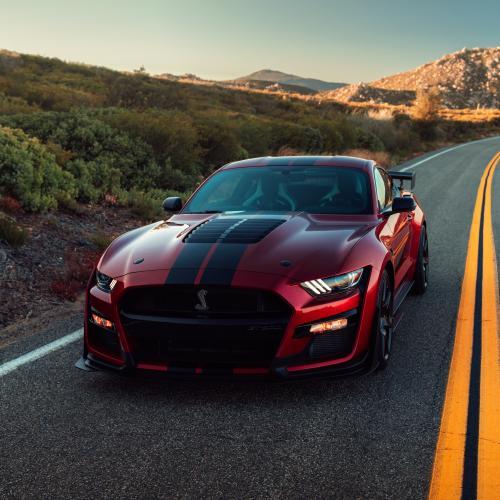 Ford Mustang | les photos officielles de la Shelby GT 500
