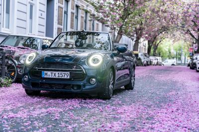 Mini Cabrio Sidewalk : les photos de la citadine en mode cerisier du Japon