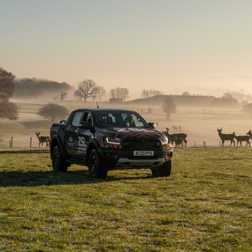 Ford Ranger Raptor | Les photos des pick-ups livrés au zoo ZSL Whipsnade