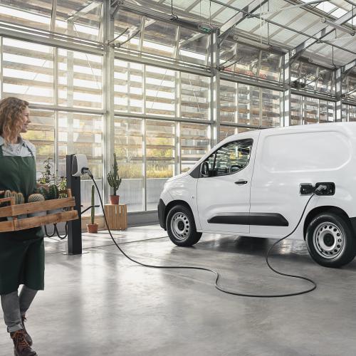 Citroën, Renault, Peugeot | les nouveautés français du mois de janvier 2021