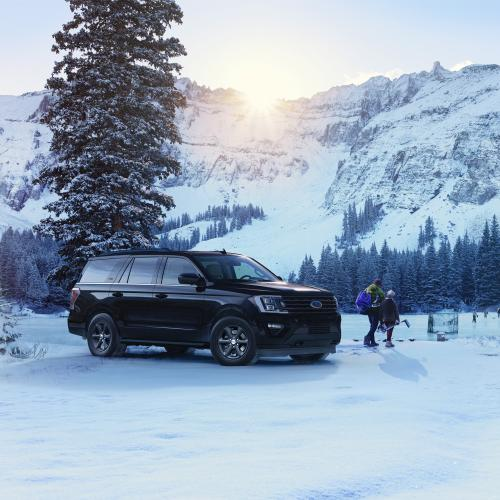 """Ford Expedition XL STX (2021) 