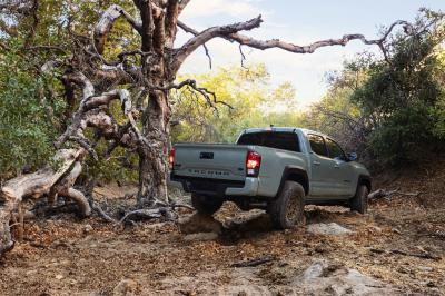 Toyota Tacoma Trail Edition (2022)   Les photos du pick-up