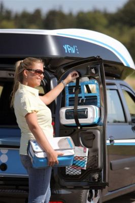 Dacia Young Activity Van