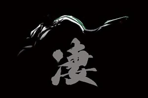 "Kawasaki dévoile sa Z1000 ""Sugomi[x]? à Milan, indiscrétion"
