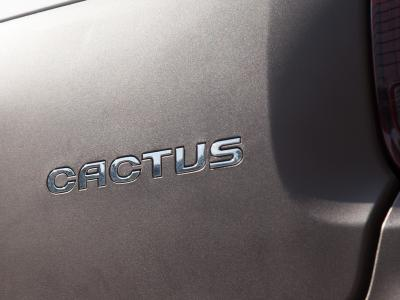 Citroën C4 Cactus