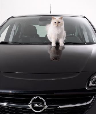 L'Opel Corsa fait ronronner Choupette, le chat de Karl Lagerfeld