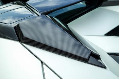 Lamborghini Aventador Roadster par Novitec