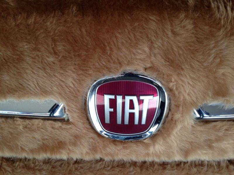 Fiat 500 Peluche