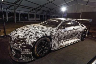 BMW M6 GT3 (juillet 2015)