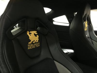 Shelby Mustang Terlingua Racing Team
