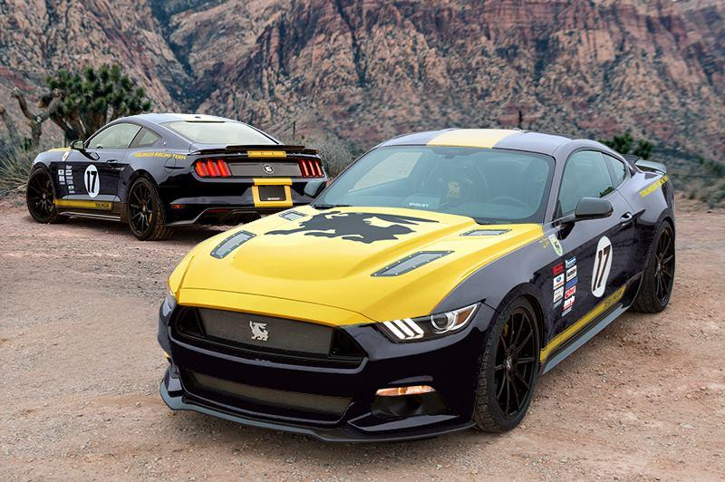 Shelby Mustang Terlingua Racing Team