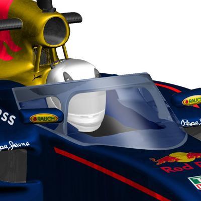 Des canopées en Formule 1