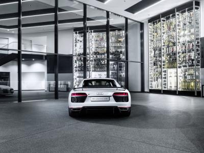 Audi R8 V10 Plus Selection 24h