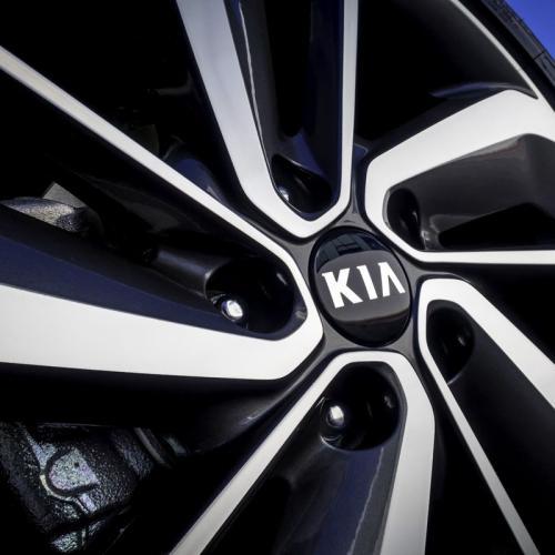 Kia Niro : toutes les photos
