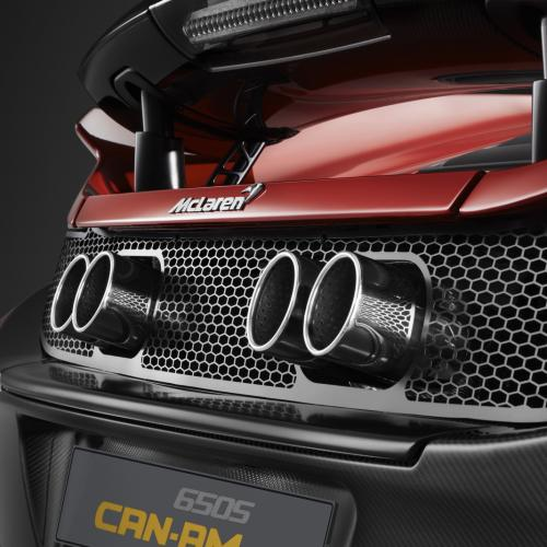 McLaren 650S Can-Am : toutes les photos