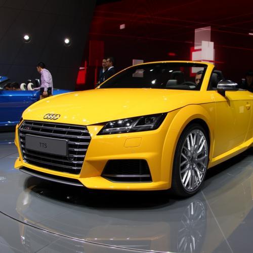 Mondial 2014 : Audi TT Roadster